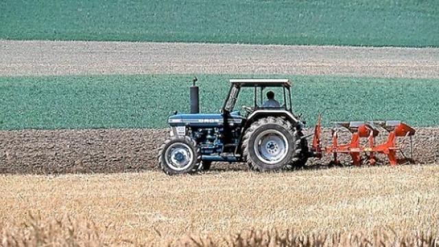 Nemački seljak nahrani 152 ljudi, a srpski tek 15
