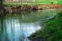 Reka Toplica - zapostavljena prirodna atrakcija