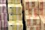 Javni dug Srbije smanjen na 24 mlrd. €