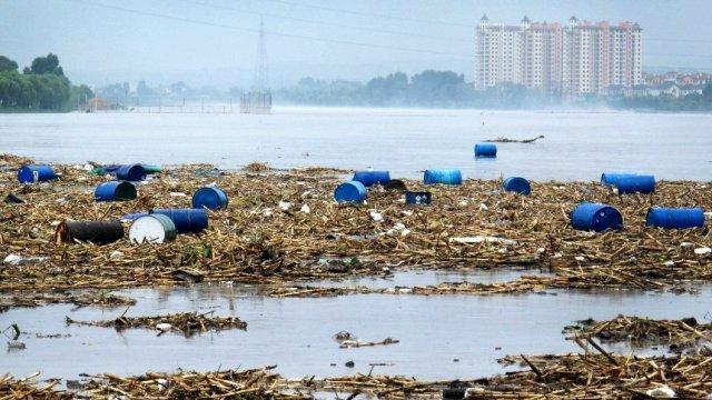 Evropske reke drastično zagađene pesticidima