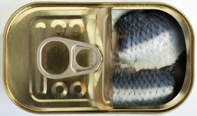 made-in-germany-rs-sardina-u-konzervi