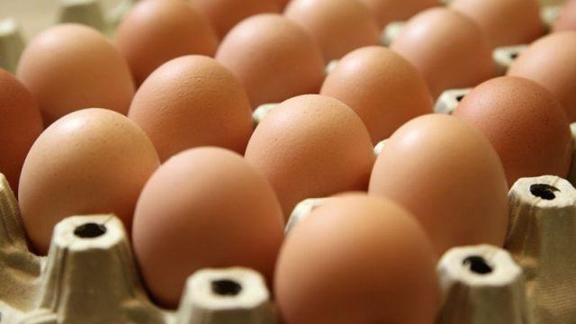 Posle skandala s jajima BASF odustaje od fipronila