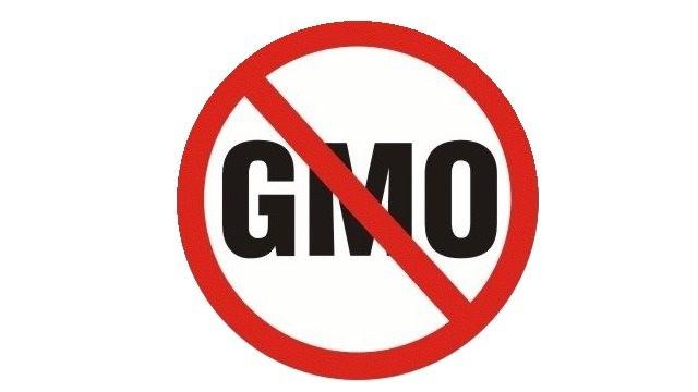 U Srbiji GMO namirnica ima svuda