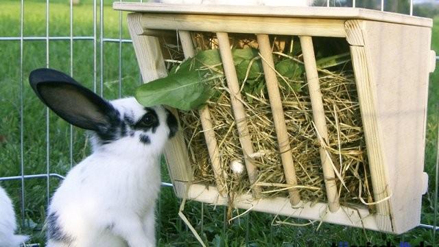 Ubuduće subvencije i za uzgajivače zečeva