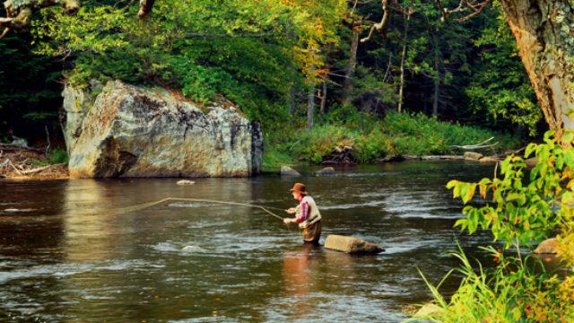 U Novom Sadu počinje Sajam ribolova
