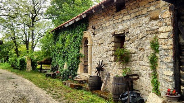 U razvoj vinskog turizma u negotinskom kraju 7 mil. €