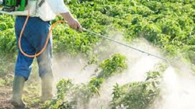 Ozloglašeni herbicid glifosat se u Srbiji koristi masovno!
