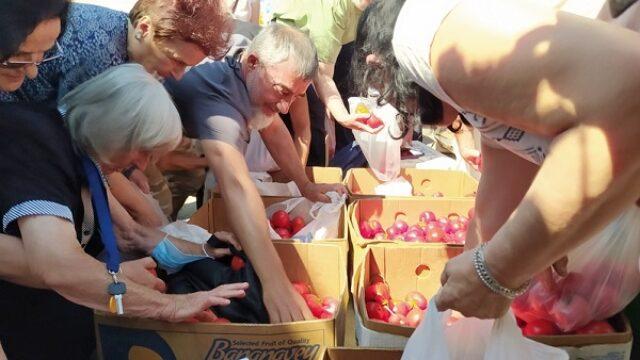 Ogorčeni leskovački poljoprivrednici ponovo besplatno dele paradajz
